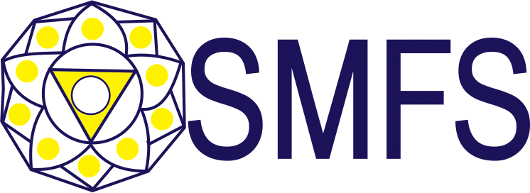 Sanjay Mehta Financial Services Logo